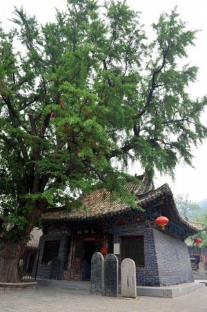洛阳网5月14日讯灵山风景区位于宜阳县城西