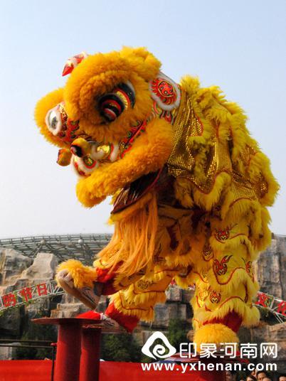 """""""狮子""""在梅花桩上翩翩起舞"""